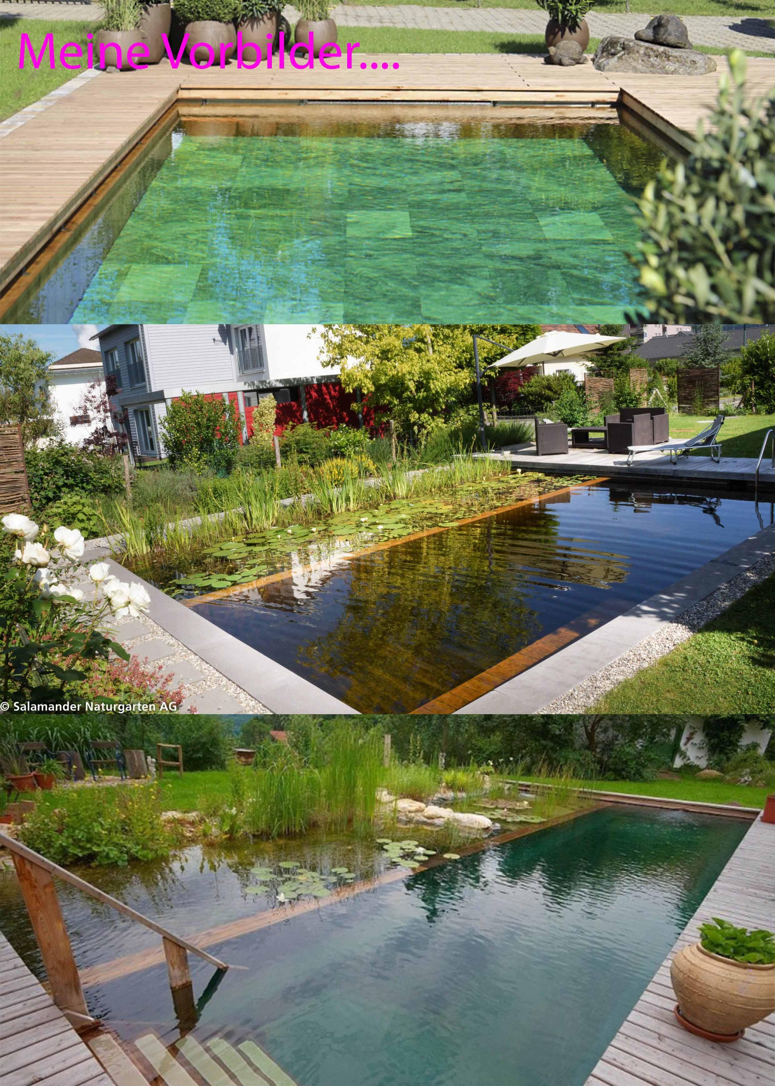 Vorstellung Schwimmteich Projekt Aus Holz Und Zweifachem Filterkreis
