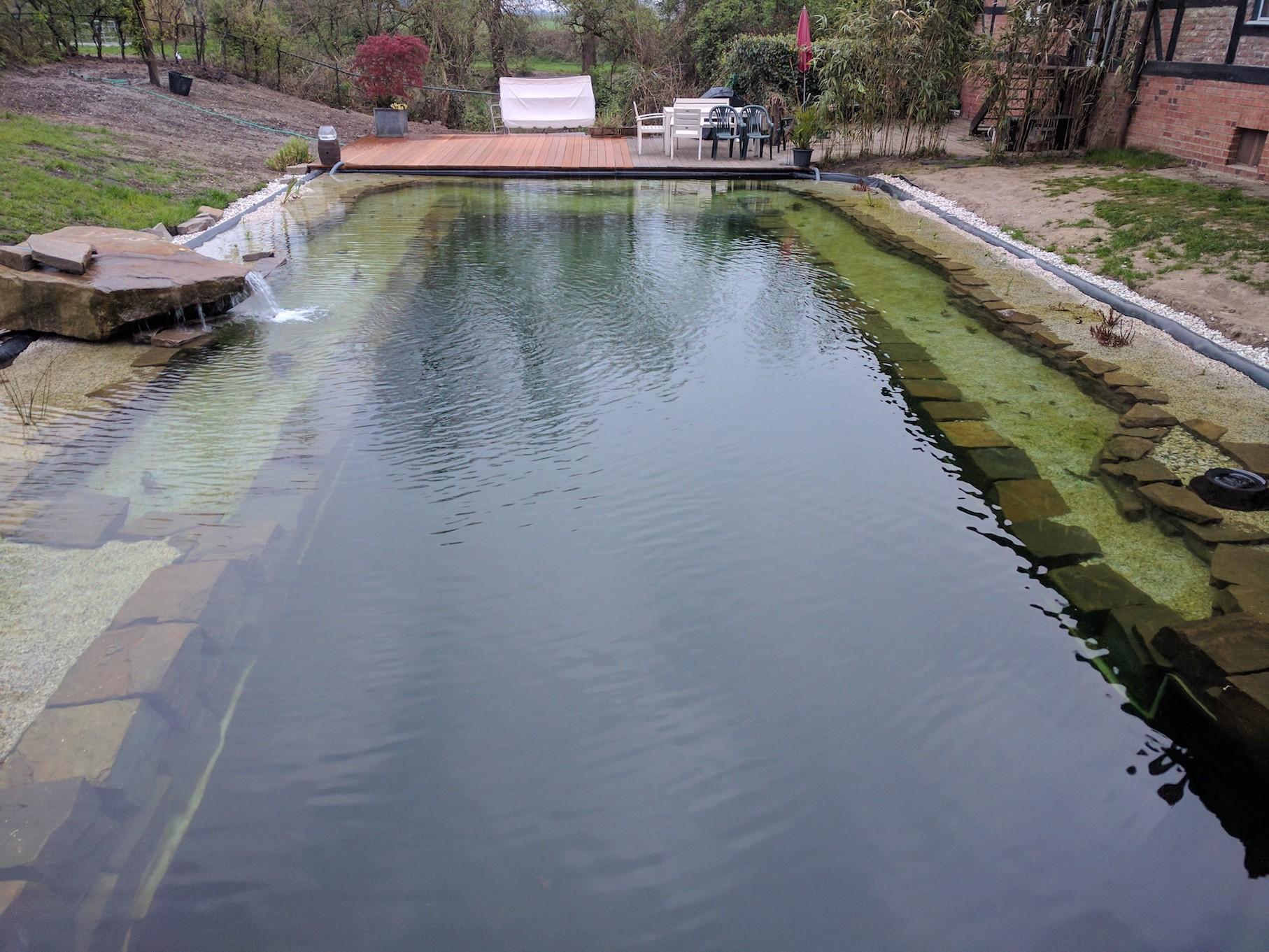 teich endlich fertig gestellt algenprobleme gegenma nahmen der treffpunkt f r schwimmteich. Black Bedroom Furniture Sets. Home Design Ideas