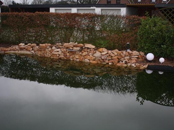 Schwimmteichbau im November 2012