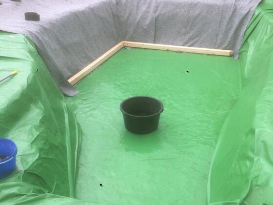 Vom Fischteich zum Pool