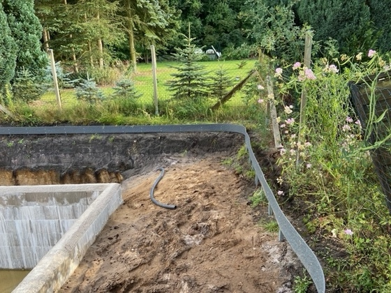 Teichband und pflanzenbereich