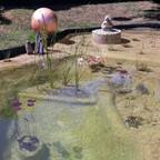 Teich 3 Monate alt, das Wasser ist glasklar