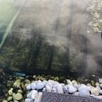 Teich aktuell - Steine und Granit sind schwarz