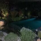 Teich bei Nacht